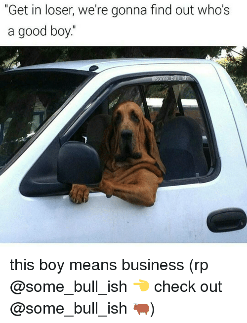 """Memes, Bulls, and 🤖: """"Get in loser, we're gonna find out who's  a good boy.  OSome bull ish this boy means business (rp @some_bull_ish 👈 check out @some_bull_ish 🐂)"""