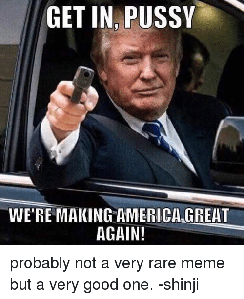 America, Meme, and Memes: GET IN PUSSY  WE'RE MAKING AMERICA GREAT  AGAIN! probably not a very rare meme but a very good one. -shinji