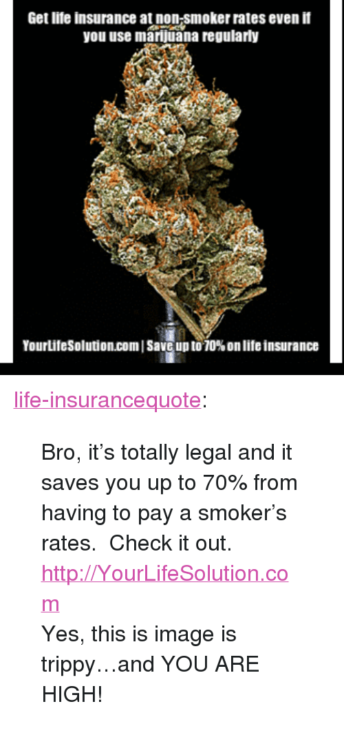 """You Are High: Get lite insurance at non-smoker rates even if  you use marijuana regularly  YourLifeSolution.com 