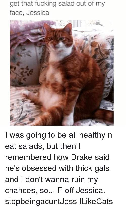 Drake: get that fucking salad out of my  face, Jessica I was going to be all healthy n eat salads, but then I remembered how Drake said he's obsessed with thick gals and I don't wanna ruin my chances, so... F off Jessica. stopbeingacuntJess ILikeCats