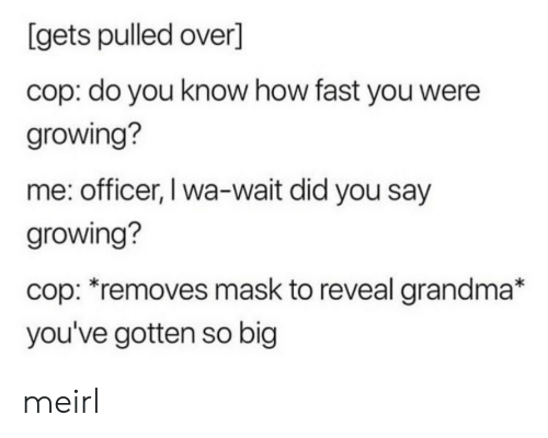 did-you-say: [gets pulled over]  cop: do you know how fast you were  growing?  me: officer, I wa-wait did you say  growing?  cop: *removes mask to reveal grandma*  you've gotten so big meirl