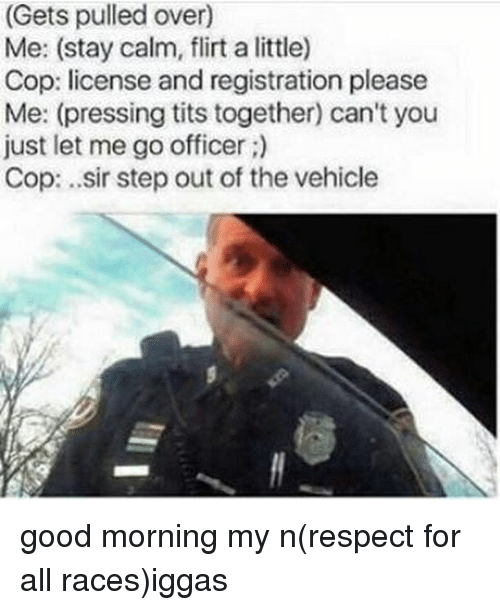 Memes, Respect, and Tits: (Gets pulled over)  Me: (stay calm, flirt a little)  Cop: license and registration please  Me: (pressing tits together) can't you  just let me go officer  Cop: ..sir step out of the vehicle good morning my n(respect for all races)iggas