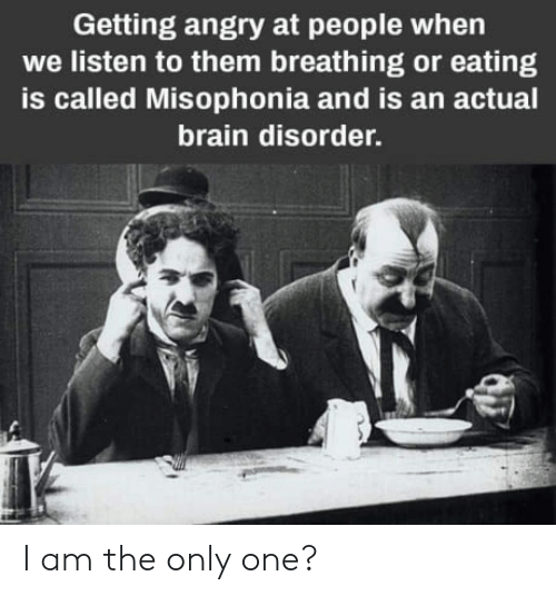 i am the only one: Getting angry at people when  we listen to them breathing or eating  is called Misophonia and is an actual  brain disorder. I am the only one?