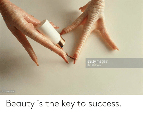 key to success: gettyimages  Ken Whitmore  200029170001 Beauty is the key to success.