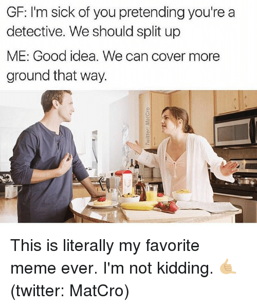 Meme, Memes, and Twitter: GF: I'm sick of you pretending you're a  detective. We should split up  ME: Good idea. We can cover more  ground that way.  ia This is literally my favorite meme ever. I'm not kidding. 🤙🏼 (twitter: MatCro)