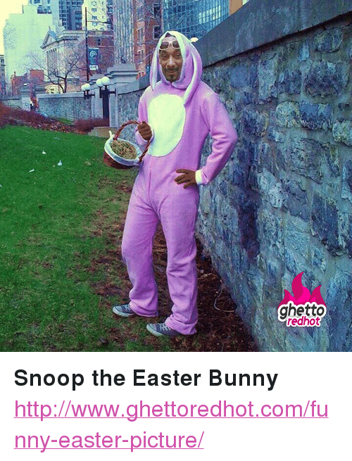 "funny easter: ghetto  redhot <p><strong>Snoop the Easter Bunny</strong></p><p><a href=""http://www.ghettoredhot.com/funny-easter-picture/"">http://www.ghettoredhot.com/funny-easter-picture/</a></p>"