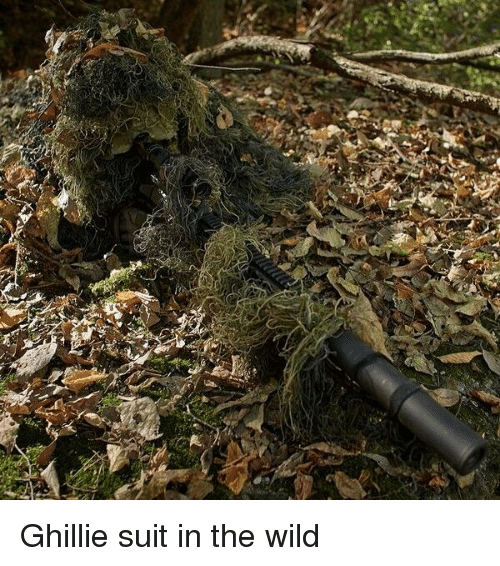 Ghillie Suit in the Wild