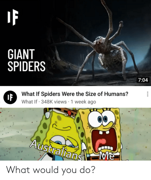 what would you do: GIANT  SPIDERS  7:04  What If Spiders Were the Size of Humans?  IF  What If · 348K views · 1 week ago  Australians  Me What would you do?