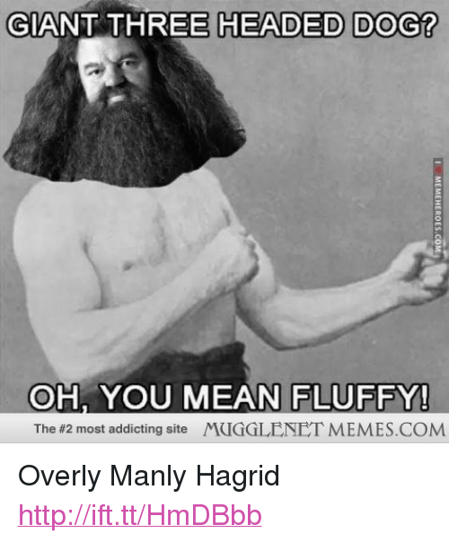 """Memes, Giant, and Http: GIANT THREE HEADED DOG?  OH, YOU MEAN FLUFFY!  The #2 most addicting site /YCIGGLENET MEMES.COM <p>Overly Manly Hagrid <a href=""""http://ift.tt/HmDBbb"""">http://ift.tt/HmDBbb</a></p>"""