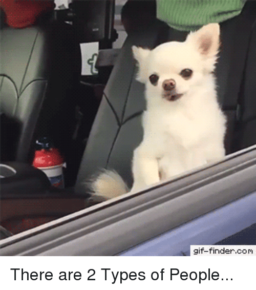 Gif, Com, and Person: gif-finder.com There are 2 Types of People...