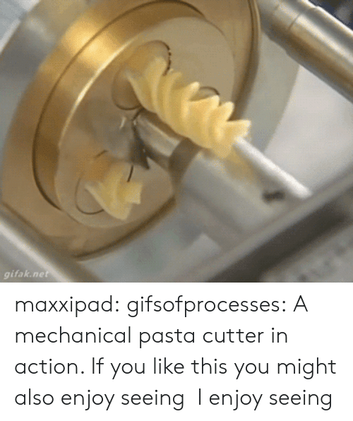 Gifak: gifak.ne maxxipad:  gifsofprocesses:  A mechanical pasta cutter in action. If you like this you might also enjoy seeing   I enjoy seeing