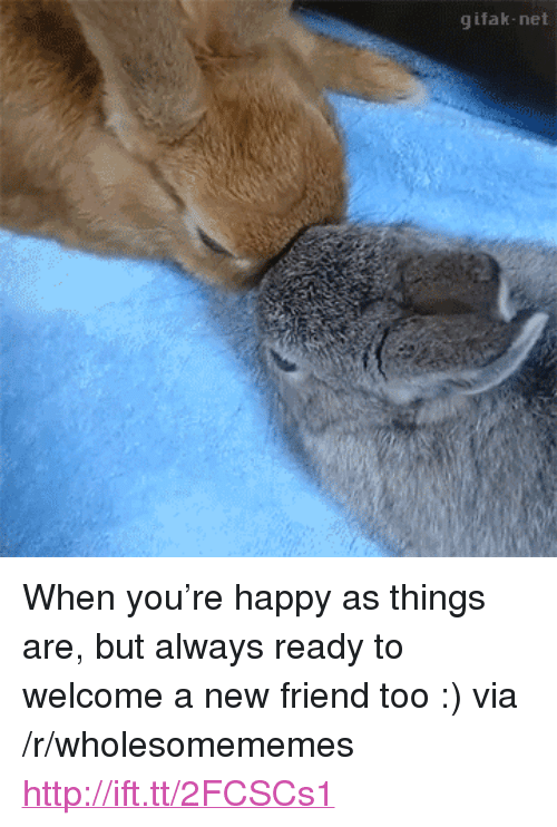 "Gifak: gifak-net <p>When you&rsquo;re happy as things are, but always ready to welcome a new friend too :) via /r/wholesomememes <a href=""http://ift.tt/2FCSCs1"">http://ift.tt/2FCSCs1</a></p>"