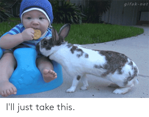 Perfect Loop Gif, Net, and This: gifak-net I'll just take this.