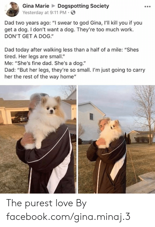 """minaj: Gina MarieDogspotting Society  Yesterday at 9:11 PM  Dad two years ago: """"I swear to god Gina, I'll kill you if you  get a dog. I don't want a dog. They're too much work.  DON'T GET A DOG.""""  Dad today after walking less than a half of a mile: """"Shes  tired. Her legs are small""""  Me: """"She's fine dad. She's a dog.""""  Dad: """"But her legs, they're so small. I'm just going to carry  her the rest of the way home"""" The purest love  By facebook.com/gina.minaj.3"""
