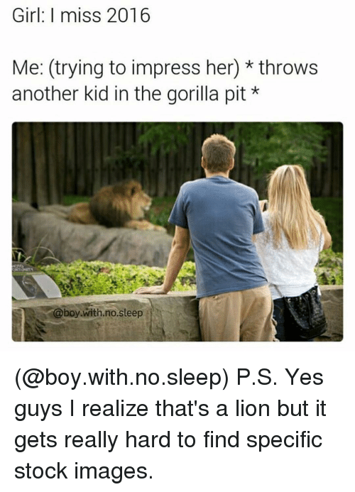 stock images: Girl: I miss 2016  Me: (trying to impress her) throws  another kid in the gorilla pit  @boy with no sleep (@boy.with.no.sleep) P.S. Yes guys I realize that's a lion but it gets really hard to find specific stock images.