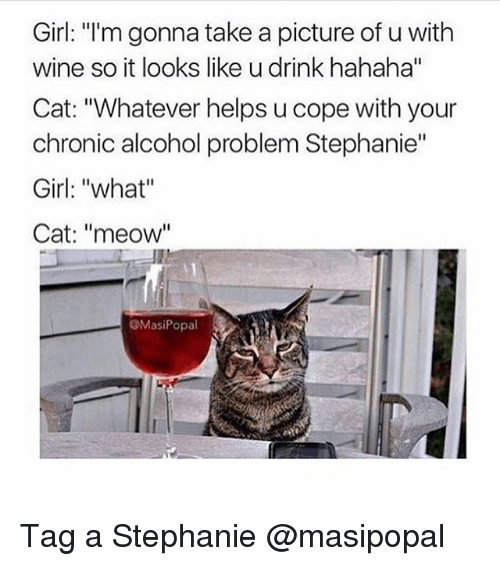 "Meowe: Girl: ""I'm gonna take a picture of u with  wine so it looks like u drink hahaha""  Cat: ""Whatever helps u cope with your  chronic alcohol problem Stephanie""  Girl: ""what""  Cat: ""meow""  @MasiPopal Tag a Stephanie @masipopal"