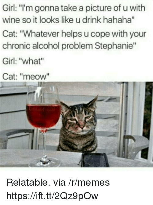 "Memes, Wine, and Alcohol: Girl: ""'m gonna take a picture of u with  wine so it looks like u drink hahaha""  Cat: ""Whatever helps u cope with your  chronic alcohol problem Stephanie""  Girl: ""what""  Cat: ""meow Relatable. via /r/memes https://ift.tt/2Qz9pOw"