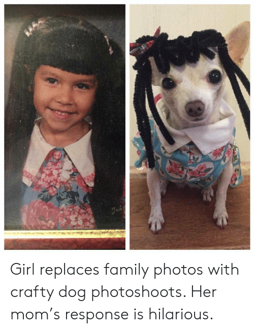 Family Photos: Girl replaces family photos with crafty dog photoshoots. Her mom's response is hilarious.