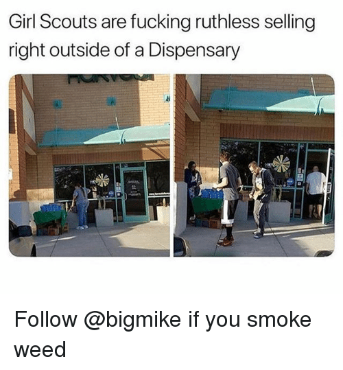 Fucking, Girl Scouts, and Weed: Girl Scouts are fucking ruthless selling  right outside of a Dispensary Follow @bigmike if you smoke weed