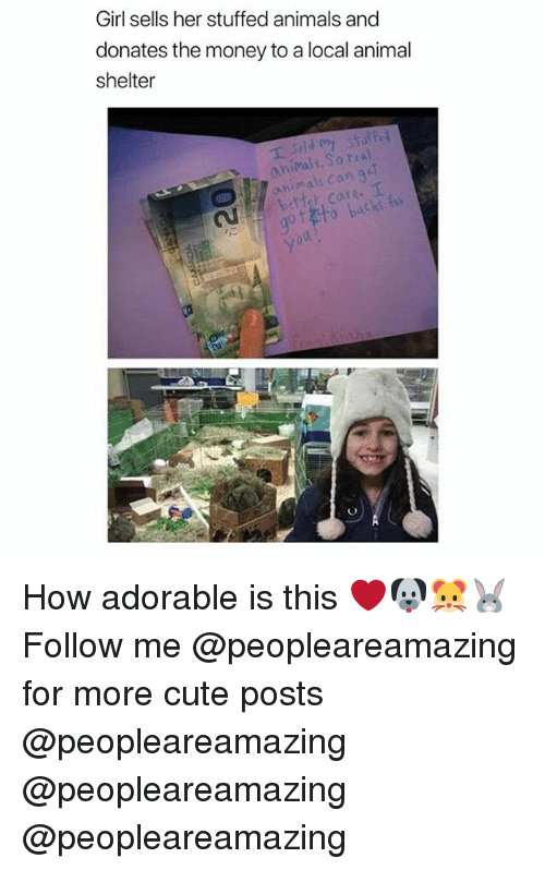 Animals, Cute, and Memes: Girl sells her stuffed animals and  donates the money to a local animal  shelter  animals,So tra  xe.  got to backstay  yo How adorable is this ❤️🐶🐹🐰 Follow me @peopleareamazing for more cute posts @peopleareamazing @peopleareamazing @peopleareamazing