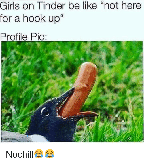tinder hookup meme 23 people who made their tinder profiles amazing more and more people are using tinder to hook up, or find a relationship, or memes, blogs and galleries.