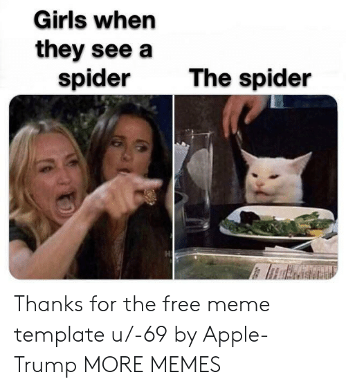 Meme Template: Girls when  they see a  spider  The spider Thanks for the free meme template u/-69 by Apple-Trump MORE MEMES