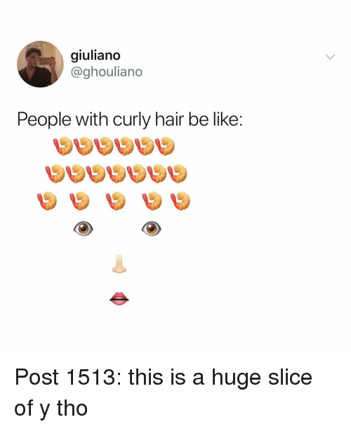 Y Tho: giuliano  @ghouliano  People with curly hair be like: Post 1513: this is a huge slice of y tho