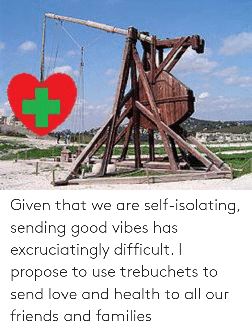 propose: Given that we are self-isolating, sending good vibes has excruciatingly difficult. I propose to use trebuchets to send love and health to all our friends and families