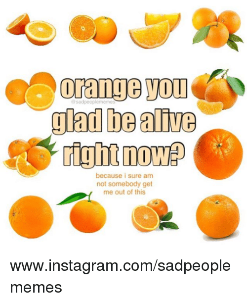 I Sure Am: glad be alive  right now  because i sure am  not somebody get  me out of this www.instagram.com/sadpeoplememes