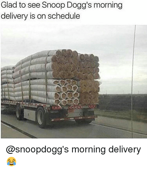Memes, Snoop, and Snoop Dogg: Glad to see Snoop Dogg's morning  delivery is on schedule @snoopdogg's morning delivery 😂