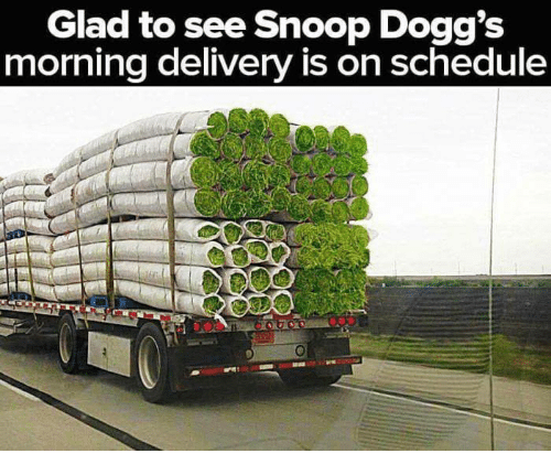 snoopes: Glad to see Snoop Dogg's  morning delivery is on schedule