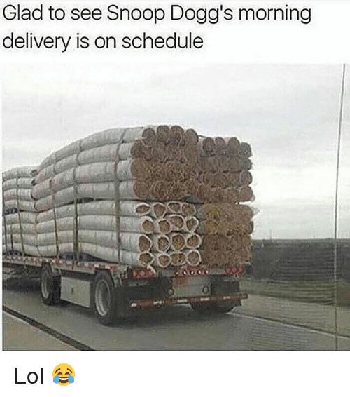 Lol, Memes, and Snoop: Glad to see Snoop Dogg's morning  delivery is on schedule Lol 😂