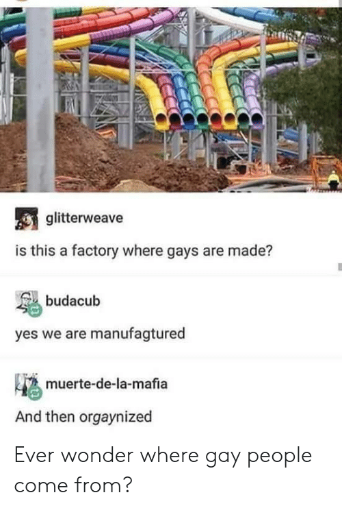 Muerte: glitterweave  is this a factory where gays are made?  budacub  yes we are manufagtured  4 muerte-de-la-mafia  And then orgaynized Ever wonder where gay people come from?