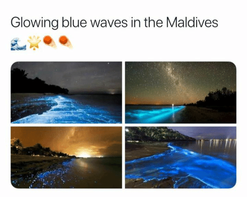 blue waves: Glowing blue waves in the Maldives