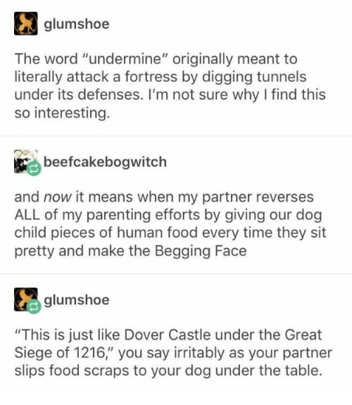"""Fortress: glumshoe  The word """"undermine"""" originally meant to  literally attack a fortress by digging tunnels  under its defenses. I'm not sure why I find this  so interesting.  beefcakebogwitch  and now it means when my partner reverses  ALL of my parenting efforts by giving our dog  child pieces of human food every time they sit  pretty and make the Begging Face  glumshoe  """"This is just like Dover Castle under the Great  Siege of 1216,"""" you say irritably as your partner  slips food scraps to your dog under the table."""