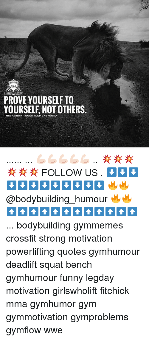 Funny, Gym, and Memes: GM  GENTLEMEN MAIL  PROVE YOURSELF TO  YOURSELF NOT OTHERS  NSTAGRAM GGENTLEMENSMAFIA ...... ... 💪🏻💪🏻💪🏻💪🏻💪🏻 .. 💥💥💥💥💥💥 FOLLOW US . ⬇️⬇️⬇️⬇️⬇️⬇️⬇️⬇️⬇️⬇️⬇️⬇️ 🔥🔥@bodybuilding_humour 🔥🔥 ⬆️⬆️⬆️⬆️⬆️⬆️⬆️⬆️⬆️⬆️⬆️⬆️ ... bodybuilding gymmemes crossfit strong motivation powerlifting quotes gymhumour deadlift squat bench gymhumour funny legday motivation girlswholift fitchick mma gymhumor gym gymmotivation gymproblems gymflow wwe