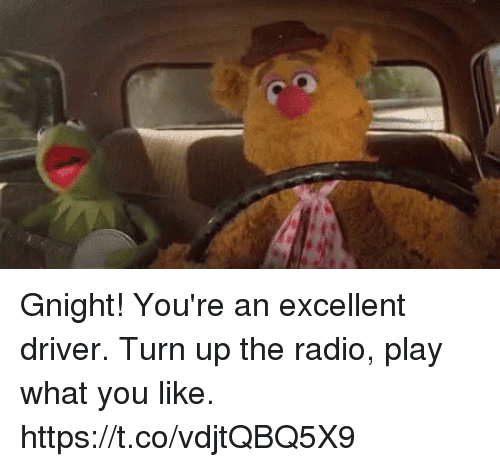 Memes, Radio, and Turn Up: Gnight! You're an excellent driver. Turn up the radio, play what you like. https://t.co/vdjtQBQ5X9