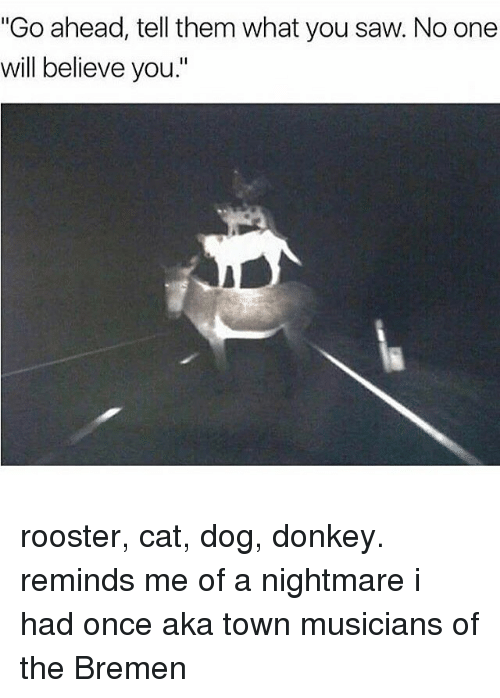 """cat dog: """"Go ahead, tell them what you saw. No one  will believe you."""" rooster, cat, dog, donkey. reminds me of a nightmare i had once aka town musicians of the Bremen"""