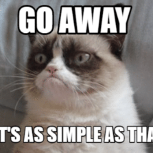 25+ Best Memes About Grumpy Cat No Go Away | Grumpy Cat No ... Go Away Meme