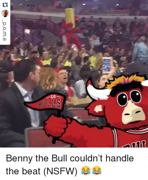 Nsfw, Sports, and Beats: GO  BULLS Benny the Bull couldn't handle the beat (NSFW) 😂😂