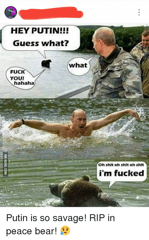 Fuck You, Savage, and Shit: Go  HEY PUTIN!!!  Guess what  what  FUCK  YOU!  hahaha  Oh shlt oh shit oh shit  i'm fucked Putin is so savage! RIP in peace bear! 😥