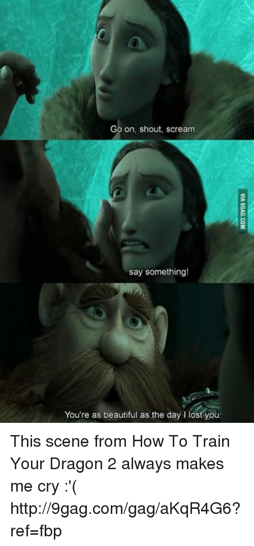 how to train your dragons: Go on, shout, scream  say something!  You're as beautiful as the day I lost you This scene from How To Train Your Dragon 2 always makes me cry :'( http://9gag.com/gag/aKqR4G6?ref=fbp