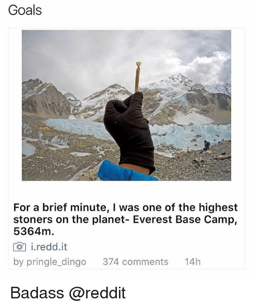 dingo: Goals  For a brief minute, l was one of the highest  stoners on the planet- Everest Base Camp,  5364m.  CO i. redd it  by pringle dingo  374 comments  14h Badass @reddit