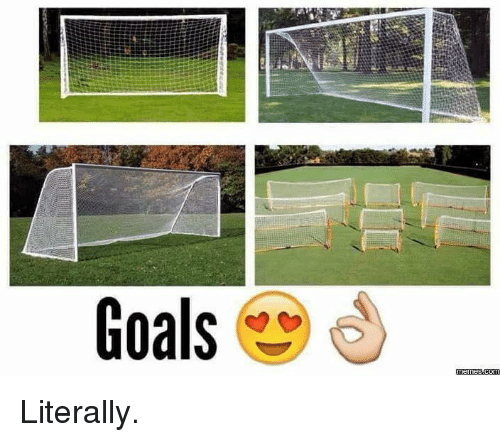 Goals, Meme, and Memes: Goals  memes.com Literally.