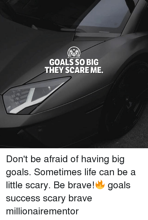 Goals, Life, and Memes: GOALS SO BIG  THEY SCARE ME. Don't be afraid of having big goals. Sometimes life can be a little scary. Be brave!🔥 goals success scary brave millionairementor