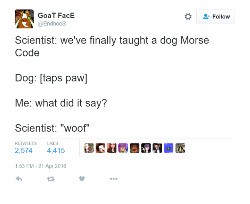 "Goat, Humans of Tumblr, and Taps: GoaT FacE  @Endhoos  Follow  Scientist: we've finally taught a dog Morse  Code  Dog: [taps paw]  Me: what did it say?  Scientist: ""woof""  RETWEETS  LIKES  2,574 4,415  @民鵯..  :53 PM-21 Apr 2016"