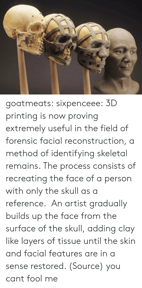 skeletal: goatmeats:  sixpenceee:  3D printing is now proving extremely useful in the field of forensic facial reconstruction, a method of identifying skeletal remains. The process consists of recreating the face of a person with only the skull as a reference. An artist gradually builds up the face from the surface of the skull, adding clay like layers of tissue until the skin and facial features are in a sense restored. (Source)   you cant fool me