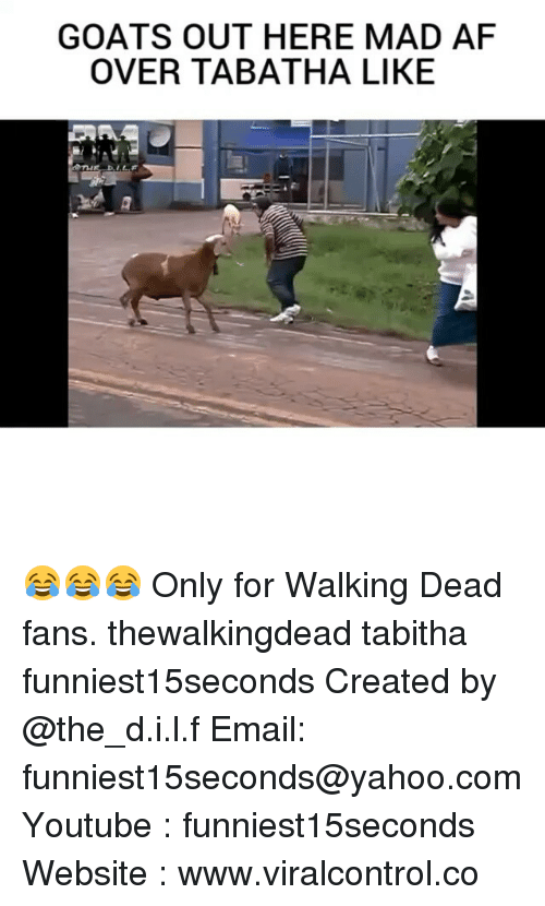 tabitha: GOATS OUT HERE MAD AF  OVER TABATHA LIKE 😂😂😂 Only for Walking Dead fans. thewalkingdead tabitha funniest15seconds Created by @the_d.i.l.f Email: funniest15seconds@yahoo.com Youtube : funniest15seconds Website : www.viralcontrol.co
