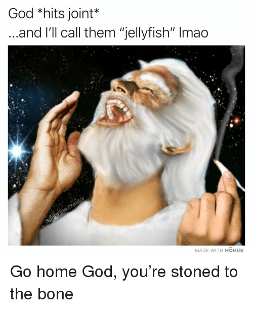 "God, Lmao, and Memes: God *hits joint*  and l'll call them ""jellyfish"" lmao  MADE WITH MOMUS Go home God, you're stoned to the bone"