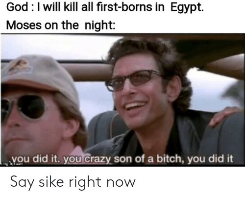 borns: God I will kill all first-borns in Egypt.  Moses on the night:  Vou did it.you Crazy son of a bitch, you did it  imgflip.com Say sike right now